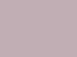 浅粉色乳胶漆